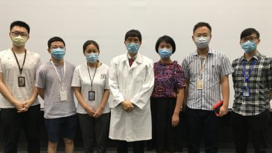 Photo of HKU team says Asian bats likely 'original host' of virus