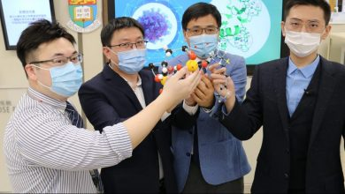 Photo of HKU researchers find Covid-19 treatment with ulcer drug