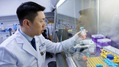 Photo of 港大新冠肺炎噴鼻式疫苗將進入第一期臨床測試